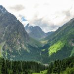 Manzara- Dağlar ve Orman