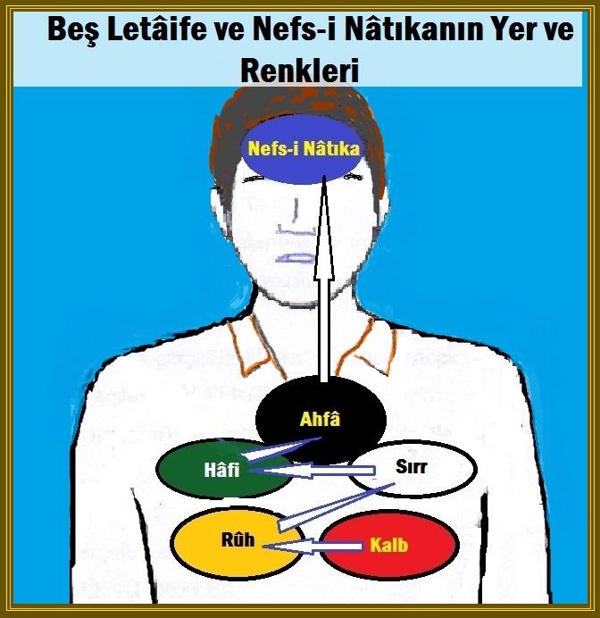 Nefy-i İsbat Zikri | ⠀ İslam Dergisi